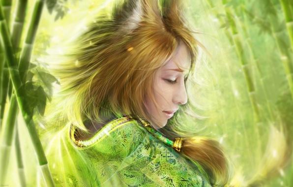 Картинка девушка, бамбук, арт, лиса, кимоно, уши, лисичка, helen rusovich, bamboo fox