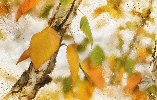 Картинка осень, листья, текстура