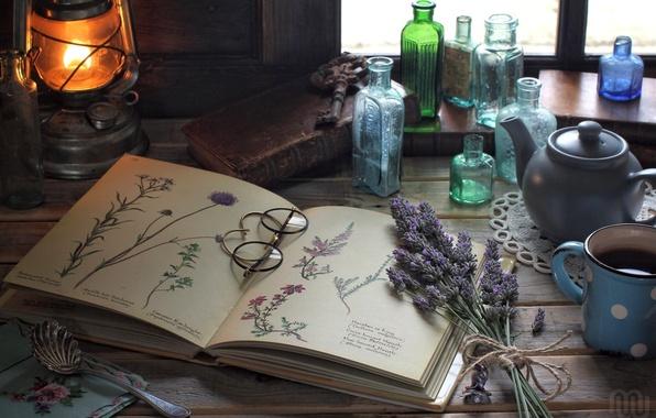 Картинка цветы, лампа, очки, рисунки, книга, бутылки, натюрморт, винтаж, лаванда, гербарий