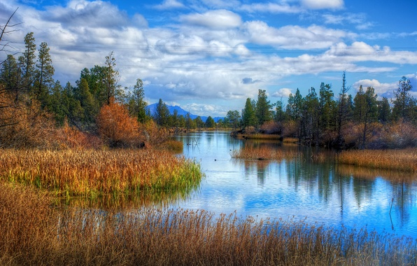 Картинка фото, Небо, Природа, Река, Пейзаж