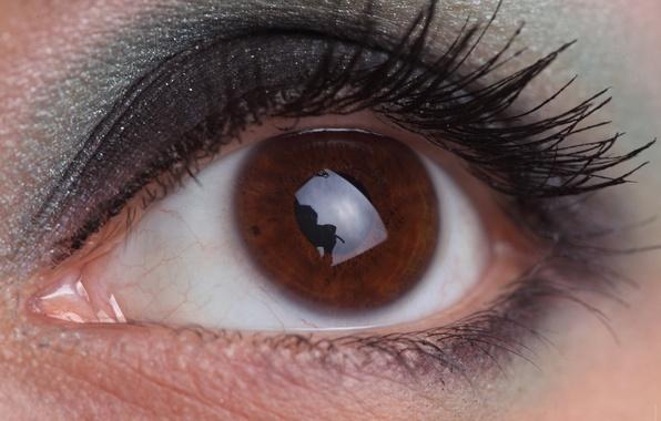 Картинка взгляд, девушка, макро, глаз, ресницы, макияж, зрачок, косметика