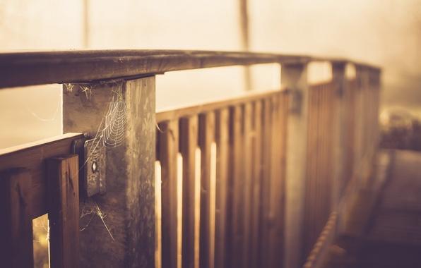 Картинка мост, паутина, перила