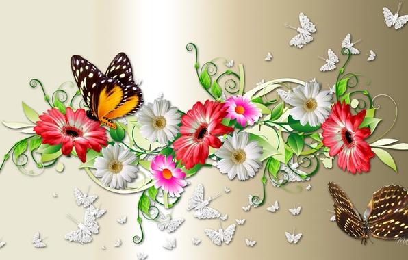 Картинка цветы, коллаж, бабочка, букет, лепестки, мотылек