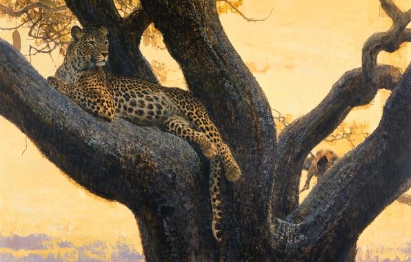 Картинка кошка, дерево, отдых, хищник, картина, ветка, арт, пятна, леопард, дикая, Bob Kuhn