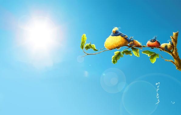 Картинка лето, жара, птички