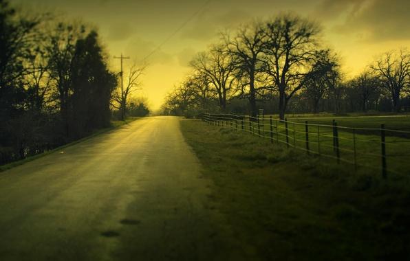 Картинка дорога, зелень, небо, трава, листья, облака, макро, деревья, пейзаж, природа, фон, дерево, widescreen, обои, листва, …