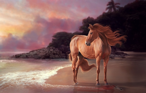 Картинка море, взгляд, рендеринг, животное, берег, лошадь, грива