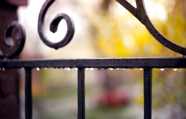 Картинка капли, макро, капельки, дождь, забор, ограда, размытость