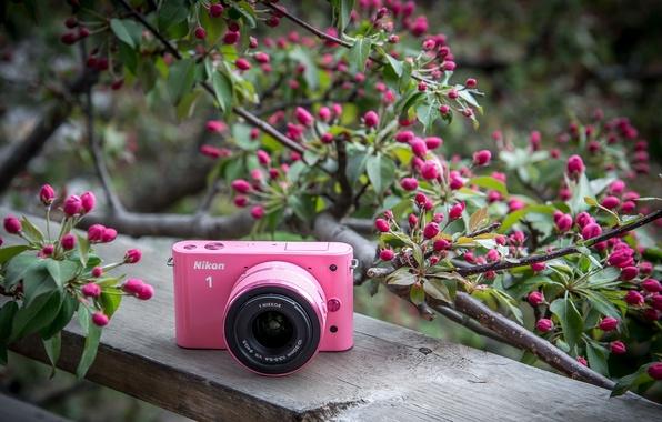 Картинка фон, фотоаппарат, Nikon
