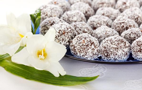 Картинка цветы, шоколад, кокос, конфеты, сладости, белые, десерт, сладкое, стружка