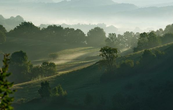 Картинка небо, трава, деревья, горы, туман, холмы, утро
