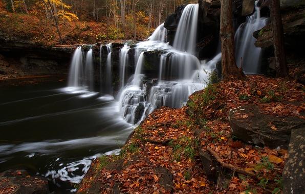 Картинка осень, лес, листья, река, водопад, каскад, West Virginia, Западная Виргиния, Brush Creek Falls