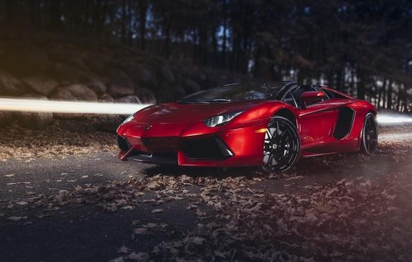 Картинка Roadster, supercar, ламборгини, автообои, Lamborghini Aventador, hq wallpaper, LP-700-4