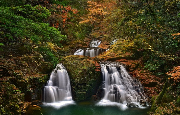 Картинка осень, лес, деревья, Япония, Japan, водопады, каскад, Набари, Akame Shijuhachi-taki, Mie Prefecture, Nabari, Akame 48 …