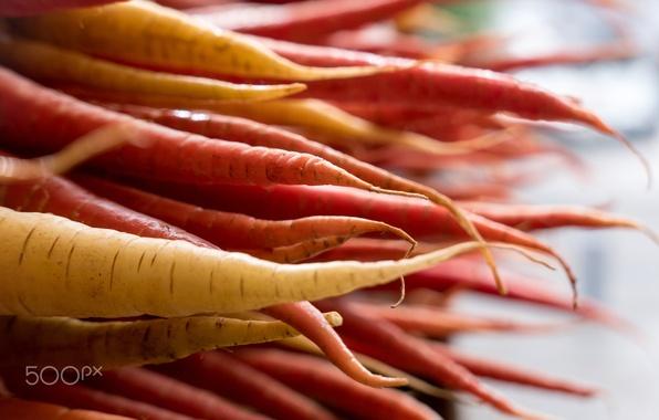 Картинка макро, еда, фокус, морковка