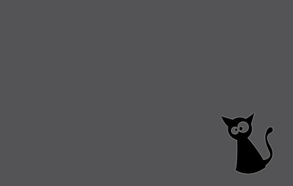 Картинка кот, серый фон, черный кот
