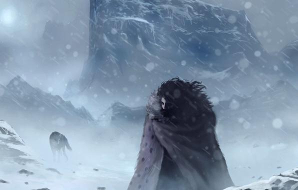 Картинка холод, зима, снег, волк, арт, Игра престолов, Джон Сноу, Jon Snow, Game of thrones
