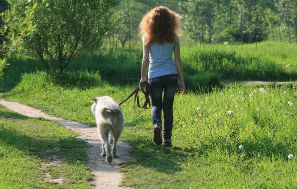 Картинка девушка, улыбка, настроение, собака, прогулка, друзья, идут в ногу