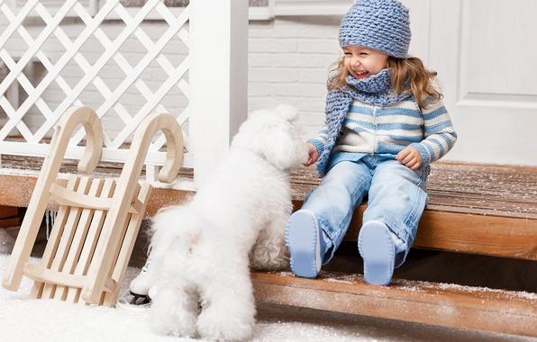 Картинка зима, снег, радость, шапка, ребенок, собака, лестница, девочка, санки, Winter, beautiful, snow, Dogs, Little girls