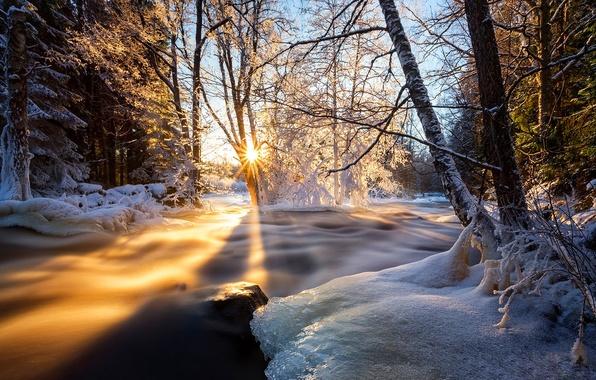 Картинка лед, небо, облака, снег, деревья, пейзаж, закат, природа, дерево, вид, цвет, HDR, colors, hdr, ice, …