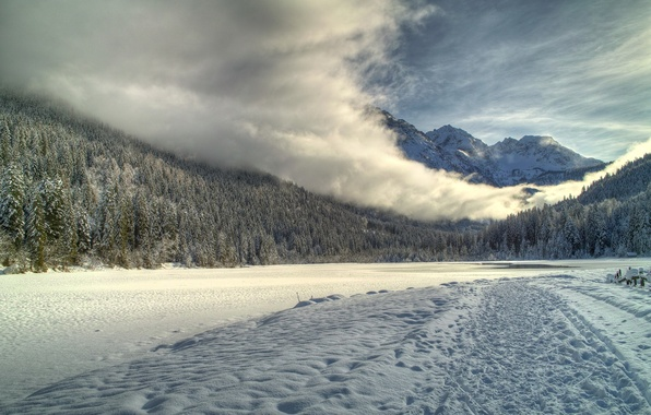 Картинка дорога, лес, небо, снег, туман, река, гора