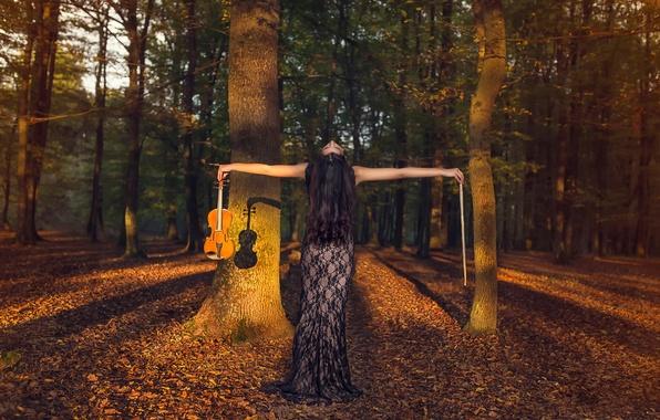 Картинка осень, лес, скрипка, смычок, скрипачка
