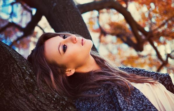Картинка Девушка, Дерево, Взгляд, Волосы, Лицо.