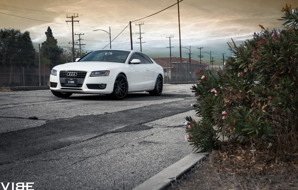 Картинка машина, Audi, vibe