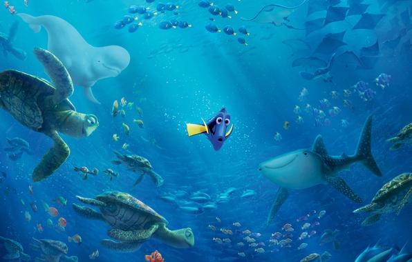Картинка море, рыбы, пузырьки, океан, мультфильм, рыбка, акула, кит, подводный мир, лучи света, черепахи, Дори, Finding …