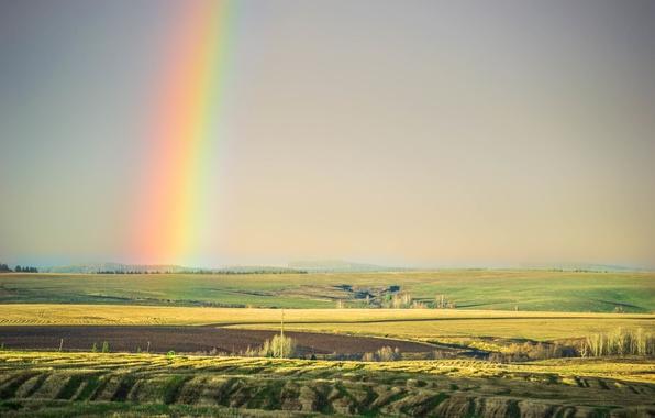 Картинка лето, небо, свет, деревья, природа, степь, поля, красота, радуга, Morgendorffer