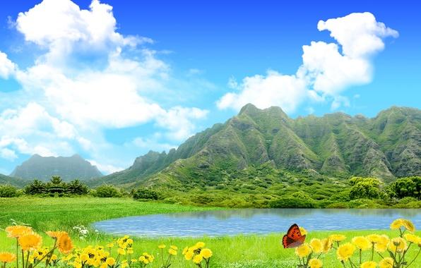 Пейзаж природа лето цветы обои фото