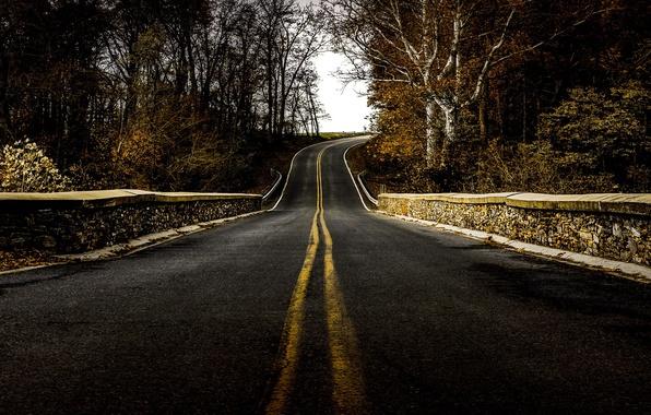 Картинка дорога, фон, перспектива
