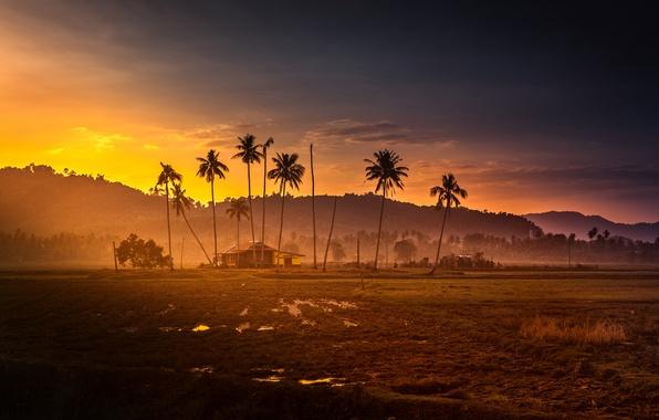 Картинка закат, горы, пальмы, джунгли, хижина, malaysia