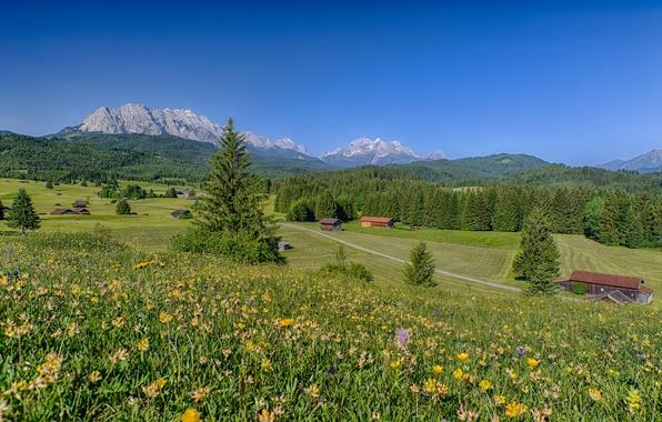 Картинка лес, пейзаж, цветы, горы, дома, Германия, Бавария, Альпы, Germany, луга, Bavaria, Alps