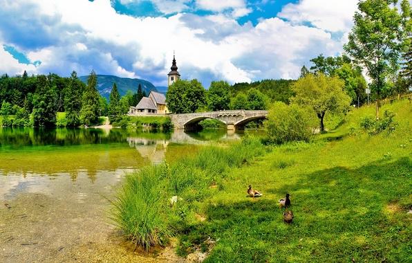 Картинка лето, небо, трава, солнце, облака, мост, церковь, словения