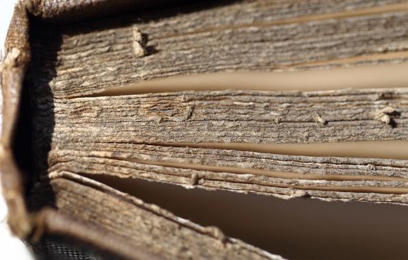 Картинка макро, книга, old book