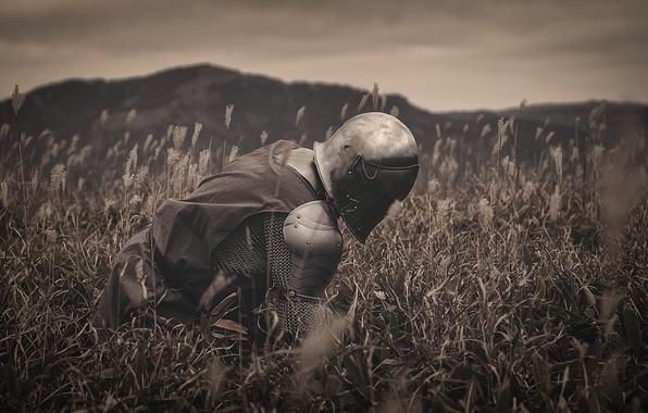 Картинка поле, трава, природа, металл, доспехи, воин, шлем, рыцарь