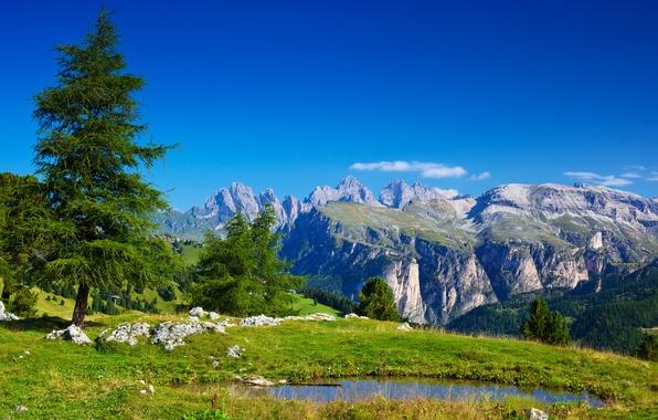 Картинка зелень, трава, вода, деревья, пейзаж, горы, природа, озеро, камни, Альпы, Италия, Italy, Alpes, Alpen