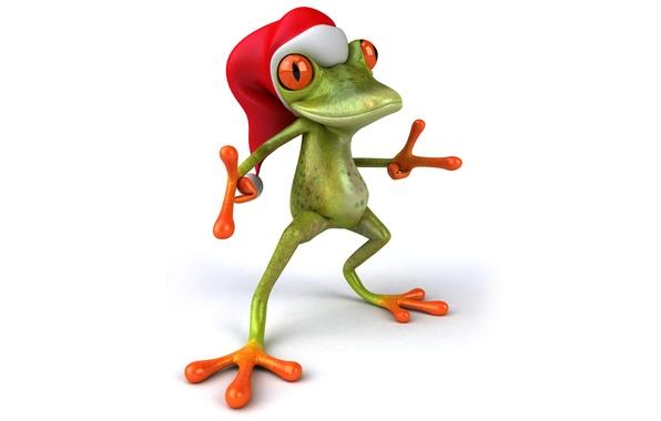 Funny Frog Cartoon Animal Clip Art ImagesAll Funny Frog