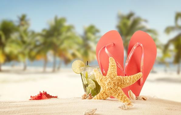 Картинка песок, море, пляж, лето, солнце, звезды, пальмы, отдых, коктейль, ракушки, summer, beach, сланцы, vacation, palms, …