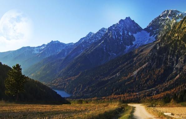 Картинка дорога, поле, лето, небо, трава, деревья, пейзажи, дороги, растения