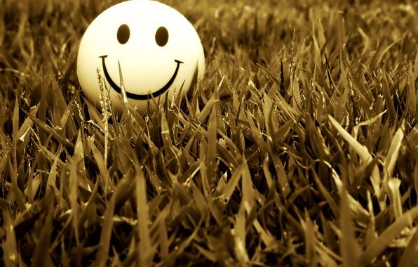 Картинка трава, улыбка, настроение, смайл, smile