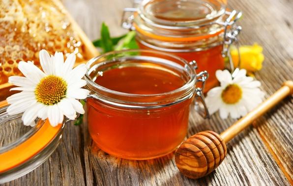 Картинка цветы, ромашки, мед, баночки, ложка, мёд