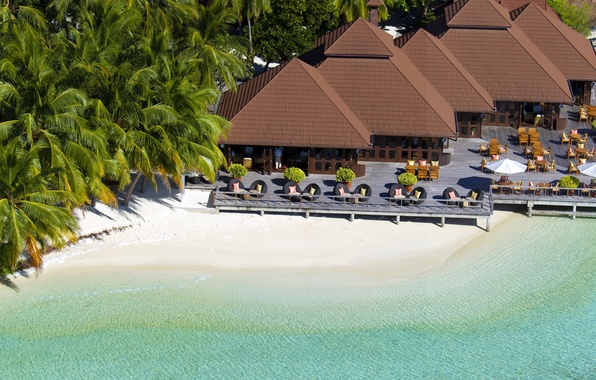 Картинка песок, пляж, пальмы, берег, остров, мальдивы, сейшелы