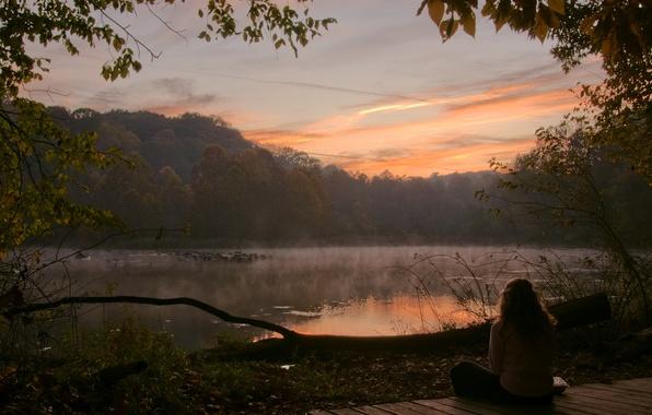 Картинка лес, девушка, деревья, озеро, утро