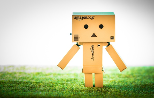 Фото обои Danbo, amazon, Данбо