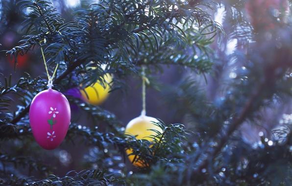 Картинка праздник, игрушки, ёлка