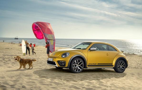 Картинка жук, Volkswagen, фольксваген, Beetle
