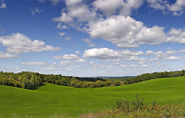 Картинка зелень, поле, лето, небо, трава, солнце, облака, деревья, Висконсин, США, Wisconsin