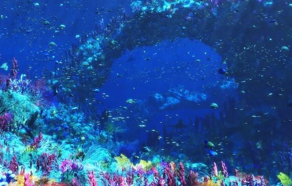 Картинка море, рыбы, графика, кораллы, подводный мир, Digital, An Octopus's Garden